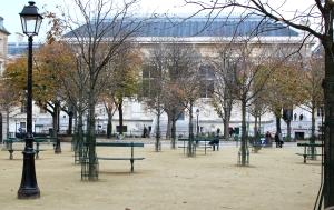 English Rose In Paris  Place Dauphine 3