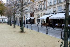 English Rose In Paris Place Dauphine 4