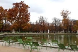 English Rose In Paris Jardin du Tuileries 4