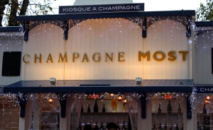 English Rose In Paris Champs Elyssee Village de Noel 1